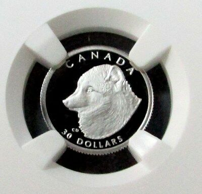 1993 Platinum Canada $30 Wildlife Arctic Foxes Ngc Proof 69 Ultra Cameo