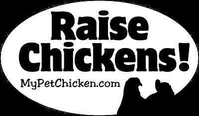 Legalize Chickens Magnetic All Weather Bumper Sticker ASM005