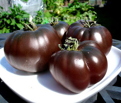 Vegetable Black Tomato - 60 Seeds - Black Prince