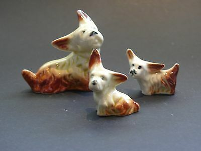 Vintage Darbyshire  Pottery Scottish Dog Family