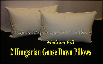 Hungarian Goose Down Standard Pillows X 2 - 100% Cotton Cover - 800 Fill Power
