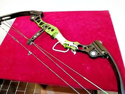 Arco compound MATHEWS PRESTIGE 60/28 libbre