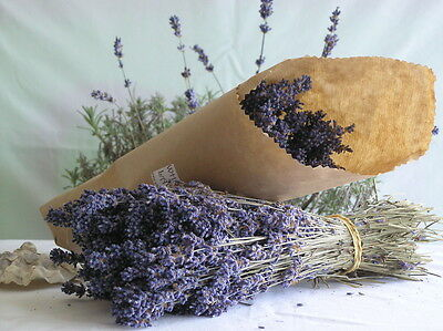 """Beautiful Decorated Smell Good 8""""-10"""" Dried Lavender Start with 40+ Stems"""