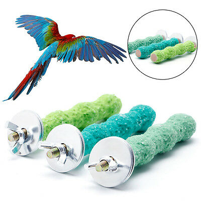 Colorful Pet Bird Cage Perch Stand Platform 2*8 Paw Grinding Parrot Parakeet