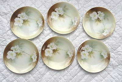 6 White Flowers RS Germany Plates- 6 1/2 inch wide (905)