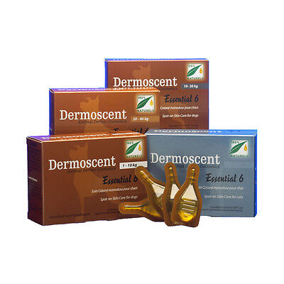 Dermoscent Essential 6 Spot-On pour Chien 20-40 Kg - 4 pipettes