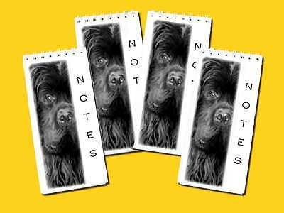 Newfoundland Dog Small Slim Pocket Note Pads Pack of 4, Gift Set
