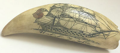 Scrimshaw Whale Tooth U.s.s. Of W Ohio & The Ship London Of Salem
