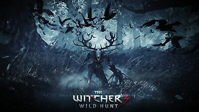 The Witcher 3 Wild Hunt Game Poster Print T254  A4 A3 A2 A1 A0 