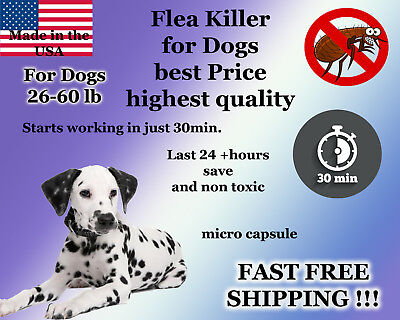 25 instant Flea Killer for Dogs 26-60lb plus Shampoo Bar Soap Sample Control NEW
