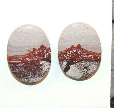 Sonora Dendritic Desert Stone Jasper Cabochons 20x15mm with 4.5mm dome (11199)