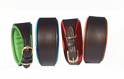 Luxury Grey Hound/Whippet leather dog collar with solid brass fittings, S,M,L