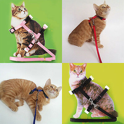Adjustable Nylon Cat Pet Harness Collar Lead Leash Traction Safety Rope Fancy