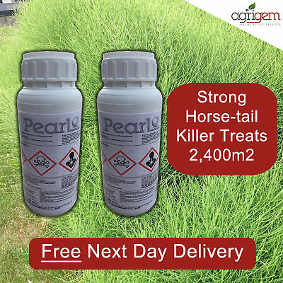 KILL MARES TAIL HORSE TAIL AND WEEDS WITH WHIPPET/PEARL WEED KILLER 2X0.5ltr