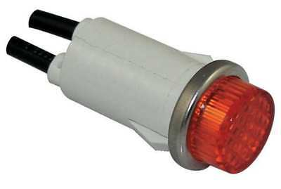 DAYTON 22NY53 Raised Indicator Light, Amber, 120V