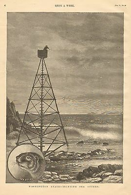 Washington State, Hunting Sea Otters, Shooting Stand Vintage 1890 Antique  Print