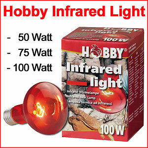 Hobby Infrared Light 100 Watt