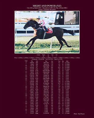 Horse Racing Super Stars Burgundy Print with Complete Race Record