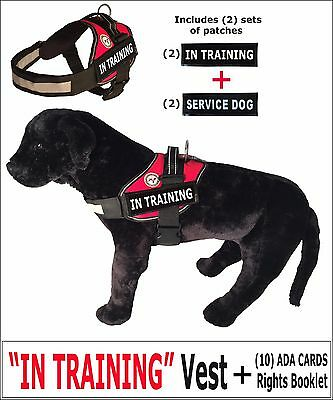 """IN TRAINING"" - DOG VEST + Rights Card/Booklet + (2) Service Dog Patches"