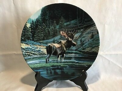 The Moose From Canada's Big Game Collection Fine China Plate