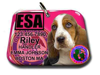 Service Dog Emotional Support Animal pet tag custom tag and ID Card ( badge)ADA