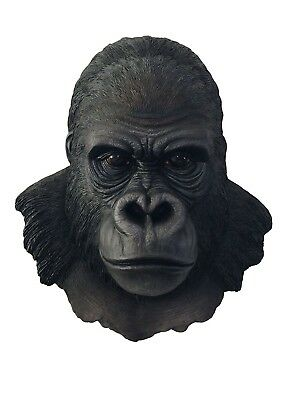 "Large 15.5"" Height African Silverback Gorilla Ape Wall Mounted Hanging Sculpture"