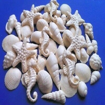 45 Edible sugar cake cupcake toppers decorations shells sea stars AIRBRUSHED