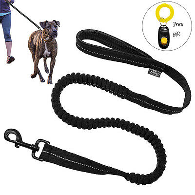 Black Reflective Nylon Dog Leads Bungee Shock Leash with Free Clicker Training