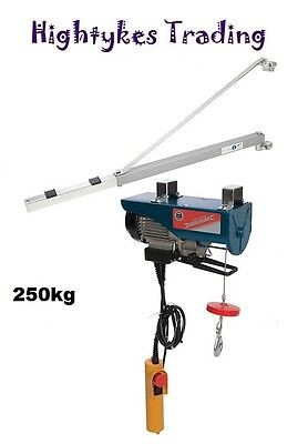500W Electric Lifting Winch Hoist 250kg Scaffold Mounted and support arm