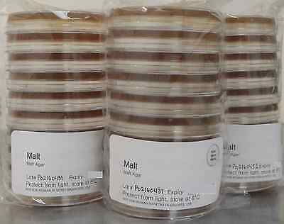 Prepared Blakeslee's Malt Extract Agar 100mm Petri Plates, 10 count