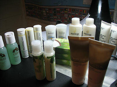Peter Thomas Roth, Paul Mitchell, KenetMD, Pantene, Tubac LOT (17 items total)