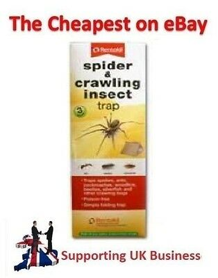 Rentokil Spider & Crawling Insect Trap 3 Pack