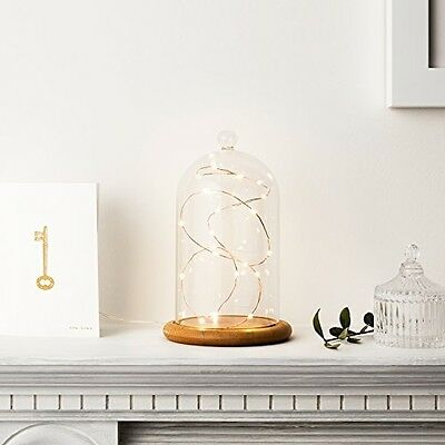 Regular Glass Cloche Bell Jar Dome with Bamboo Tray by Lights4fun Home Decor