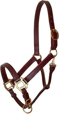 Brown leather Triple Stitched Track halter with brass hardware