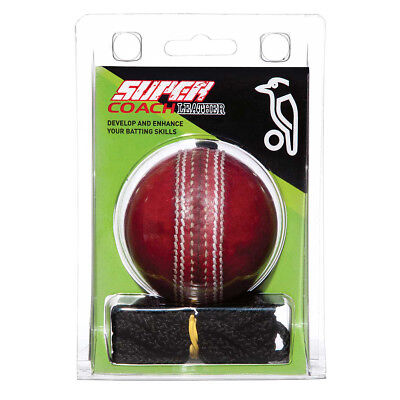 NEW Kookaburra Super Coach TraineR Leather Cricket Ball   from Rebel Sport