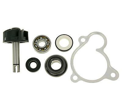 water pump repair kit for Majesty, X-Max, X-City, Versity 250