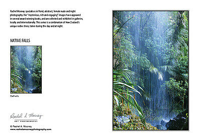 New Photography Card-NZ Native Falls