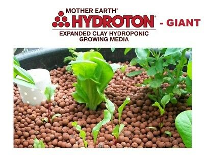 4 Liters GIANT HYDROTON 15- 25mm Clay Pebbles Hydroponic Expanded Rock BAY HYDRO