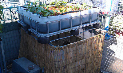 Brand New Complete Aquaponics System Set Up - Fish And Grow Bed Ibc Tanks