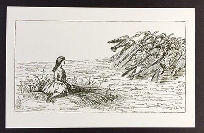 Alice In Wonderland POSTCARD Lewis Carroll ANIMALS Pool Of Tears BIRDS AW4