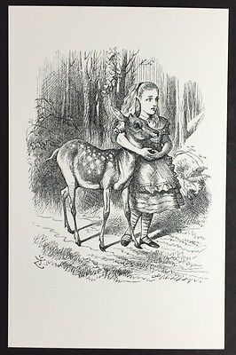 Alice In Wonderland POSTCARD Lewis Carroll JOHN TENNIEL Deer FAWN Wood AW43