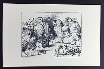 Alice In Wonderland POSTCARD Lewis Carroll JOHN TENNIEL Animals MOUSE Dodo AW44