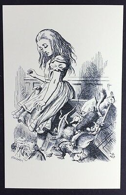 Alice In Wonderland POSTCARD Lewis Carroll JOHN TENNIEL Animals JURY BOX AW56