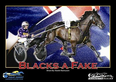 Harness Racing Inter Dominion Champions A3 Prints Set of 4 Never before released