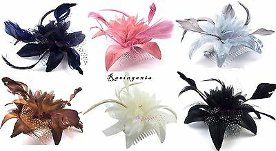 Wedding/Bridesmaids/Races Petals & Net Flower & Feathers Hair Comb Fascinator