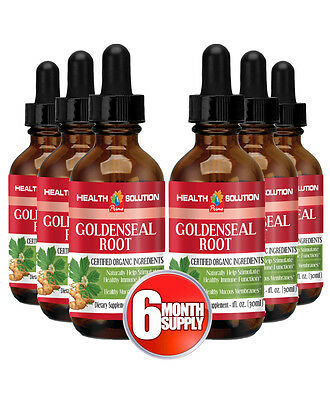 Gastrointestinal - Goldenseal Root Drops 30ml - Goldenseal Root Tablets 6B