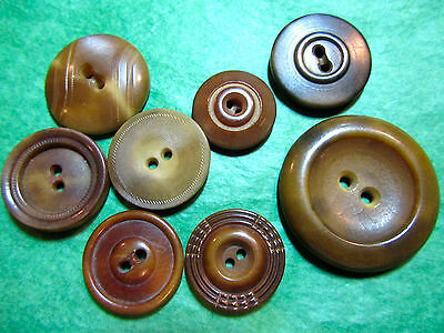 """(8)  3/4""""+ BROWN VEGETABLE IVORY 2-HOLE CRAFT BUTTONS-ASSORTED VINTAGE Lot#L405"""