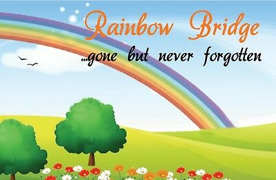 Rainbow Bridge Poem Bookmark/Wallet Keepsake Card Pet Cat Dog Memorial