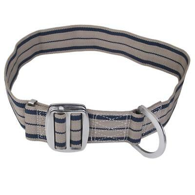 Outdoor Rock Climbing Carving Safety Belt Fall protection D-Ring Equipment