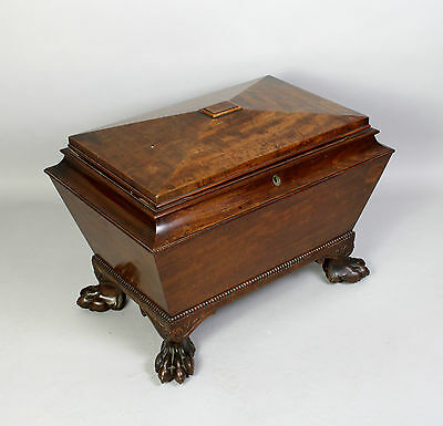 A Lovely Quality Regency Mahogany Wine Cooler On Hairy Paw Feet
